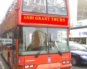 Andi Grant Realtor Tours